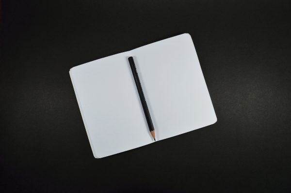 write a perfect essay